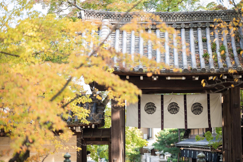 色づく今宮神社(秋)