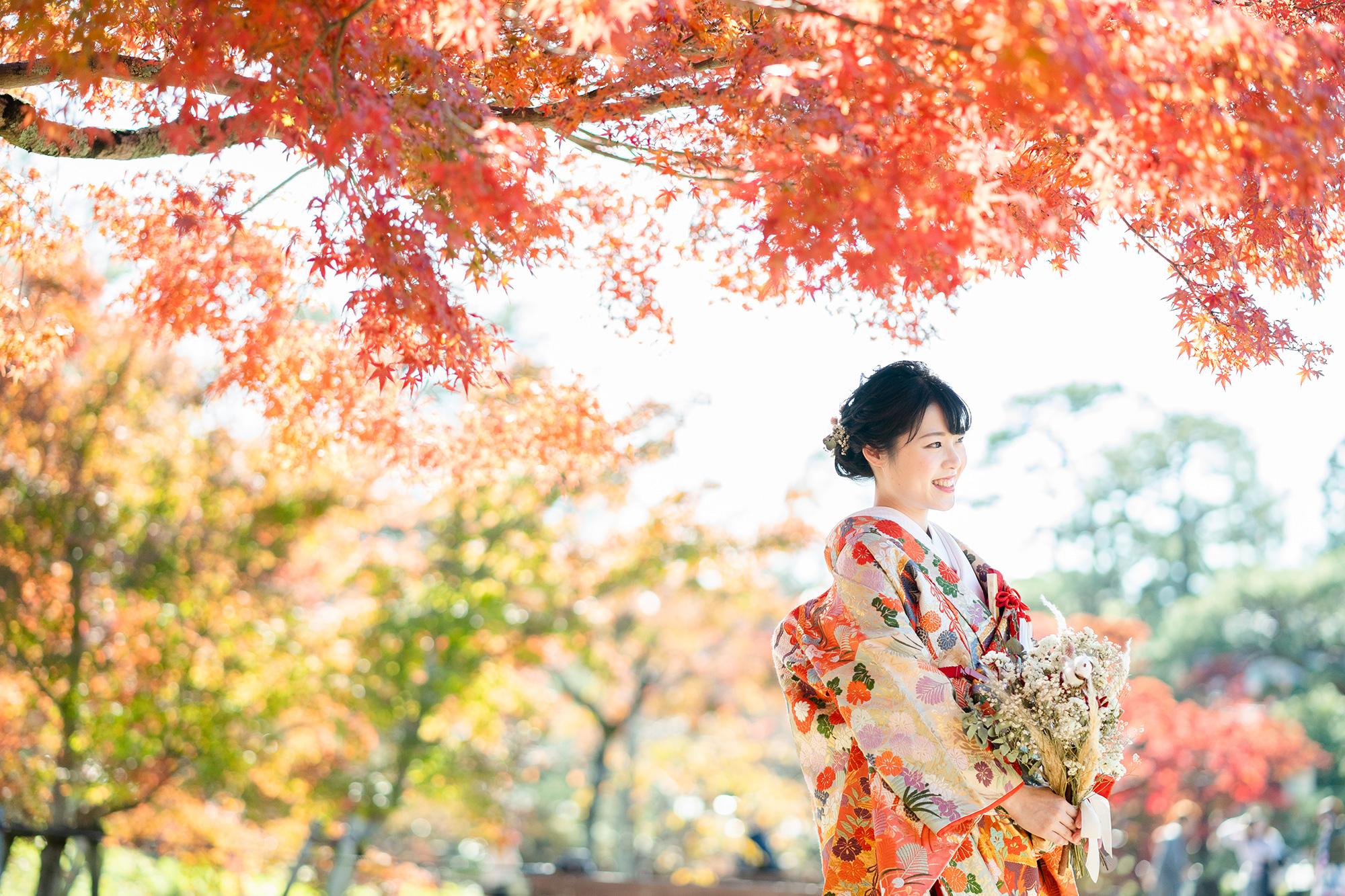 新婦ソロ、紅葉の円山公園