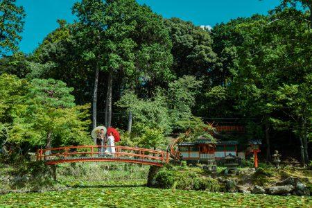 大原野神社の池
