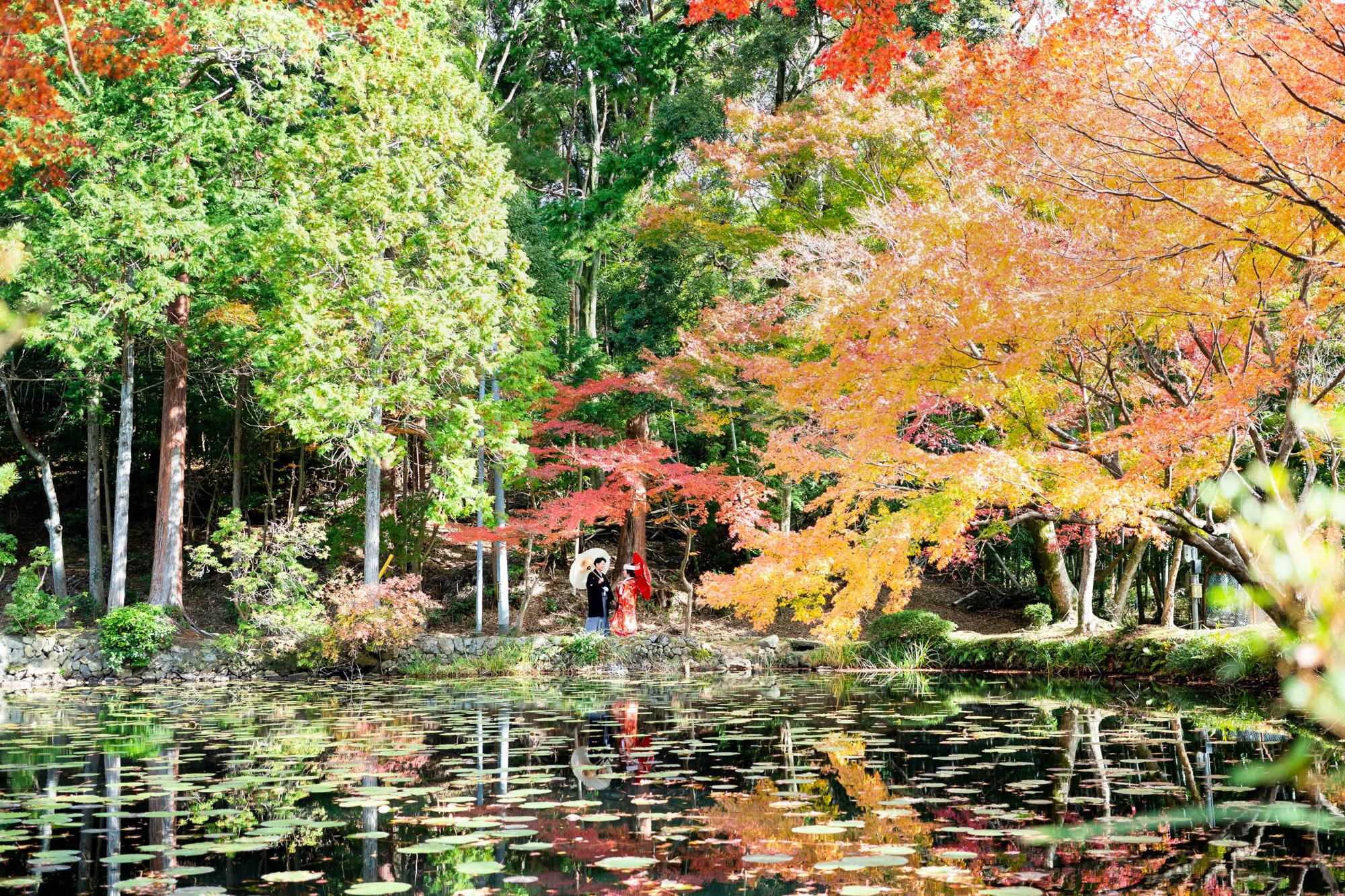 紅葉の綺麗な池
