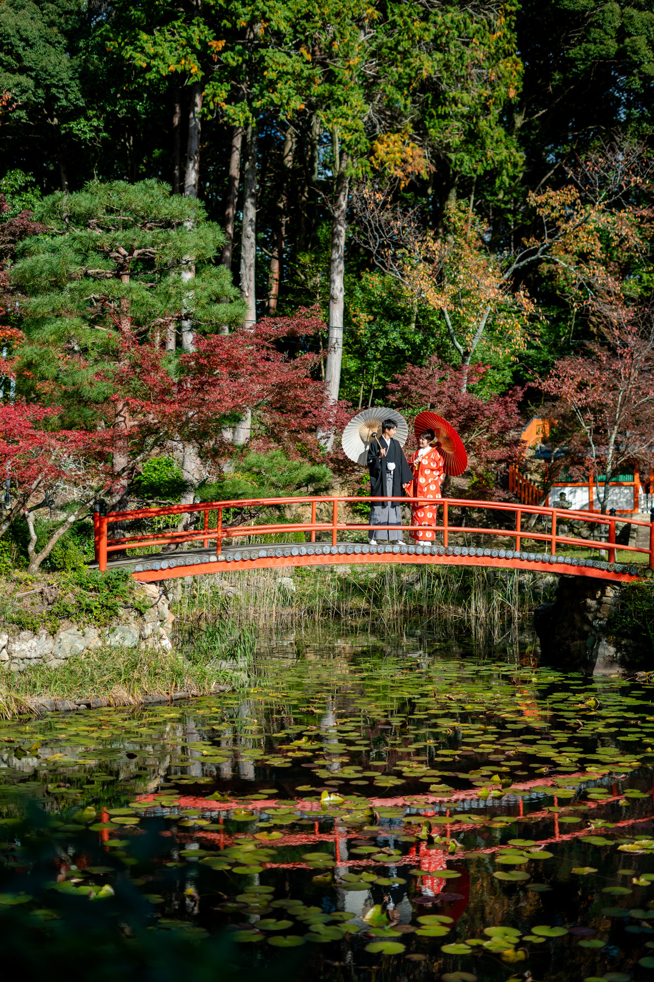 橋の上で和傘をさしているイメージ