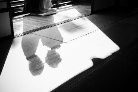 おしゃれな影の写真