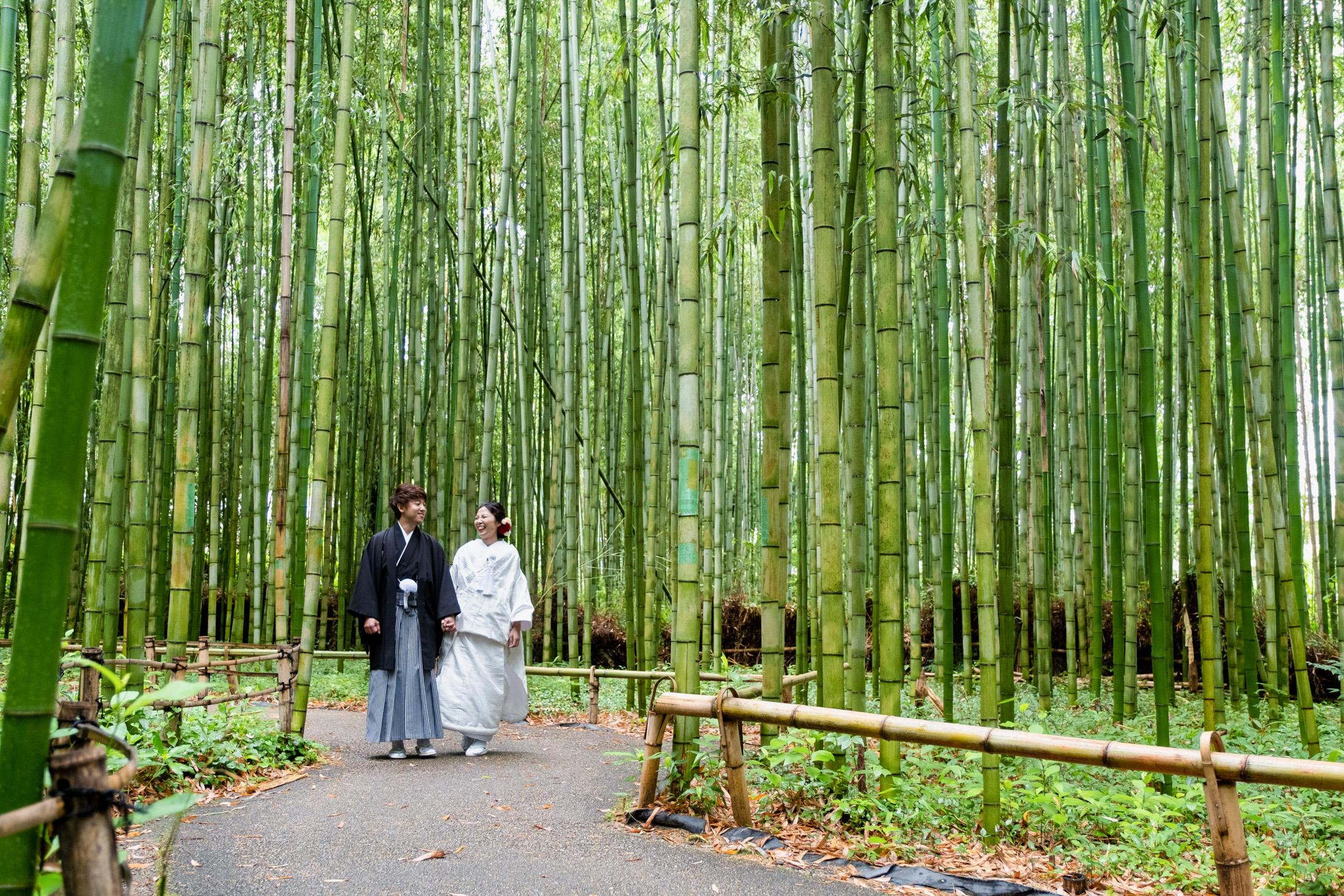 嵐山前撮り・竹林スペースにて