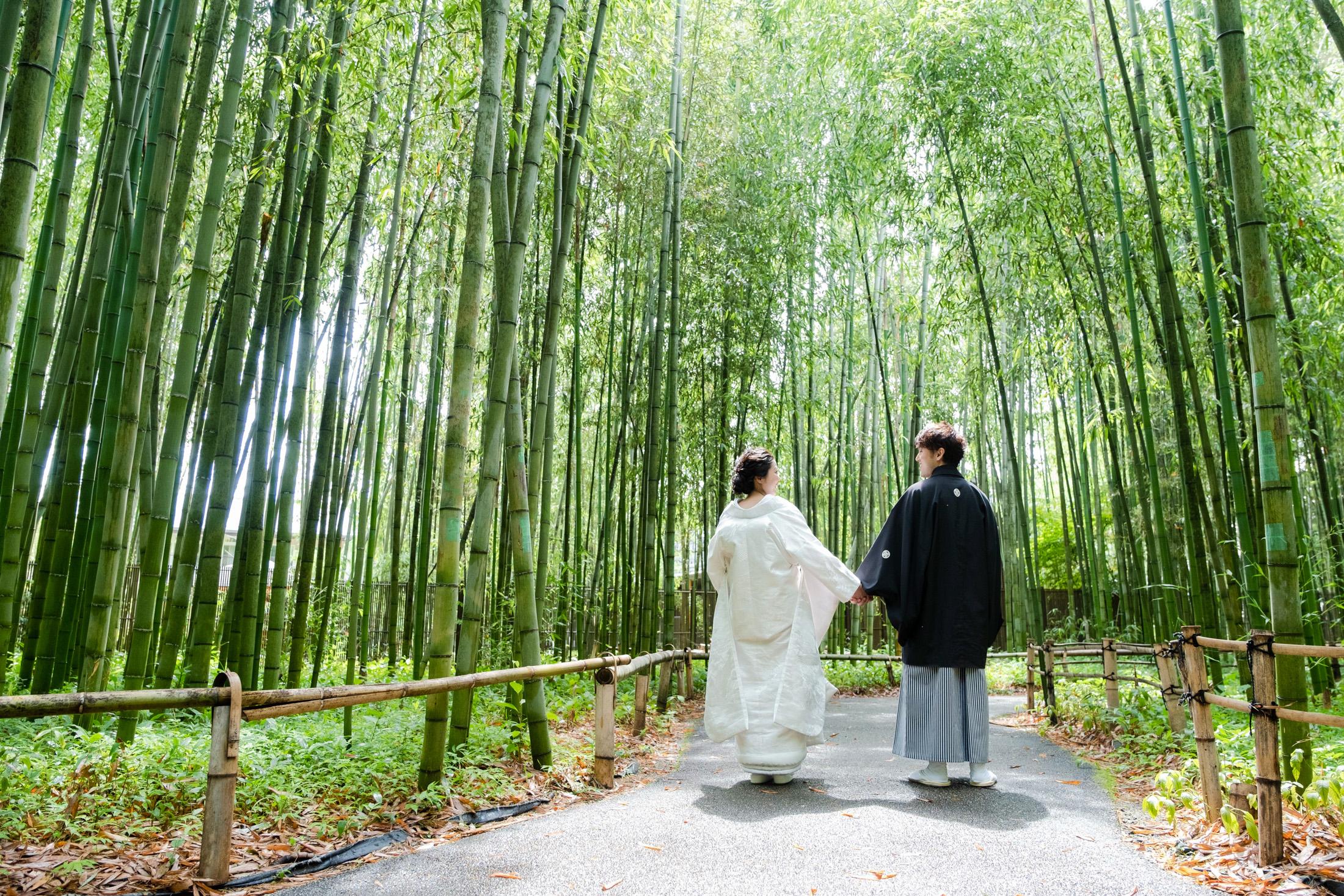嵐山の竹林にて、前撮り