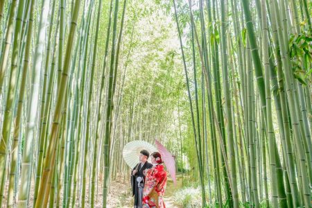 竹の中、新郎新婦様、前撮り中