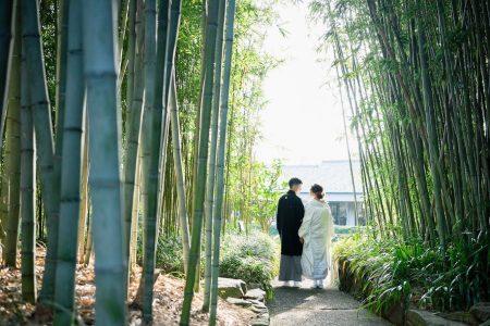 冬の竹林で前撮り