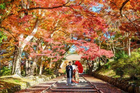 京都の毘沙門堂で前撮り。紅葉がきれいです。