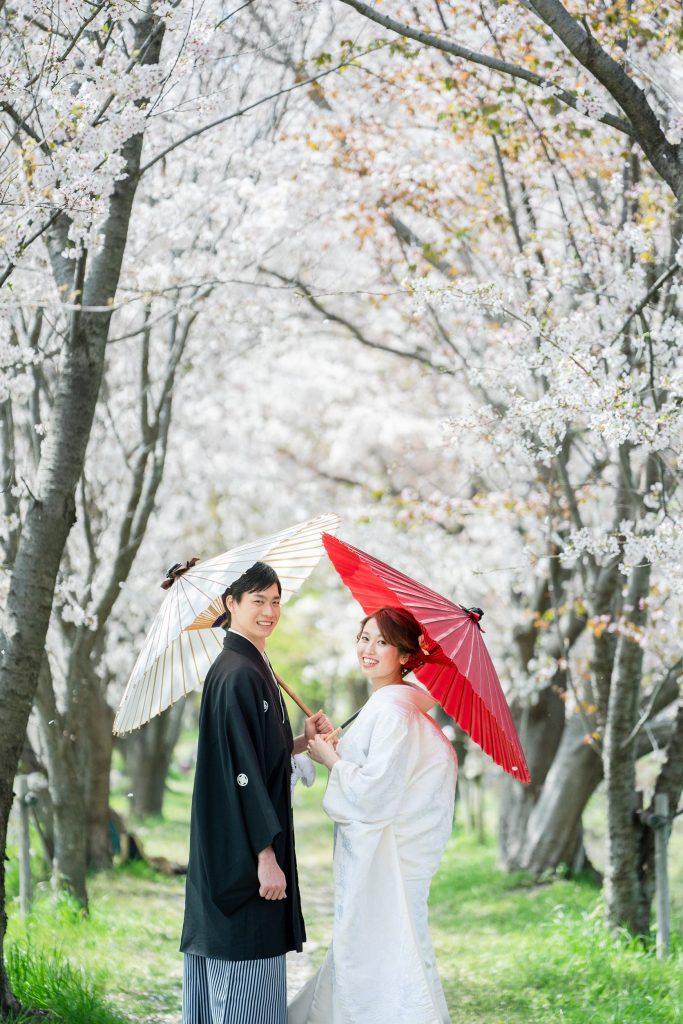 嵯峨野の桜と前撮り