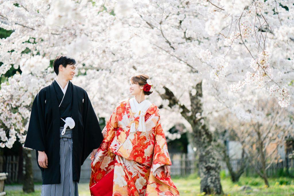 大沢の池周辺の桜