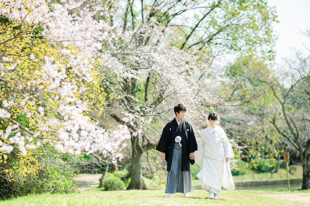 桜のある場所を歩く新郎新婦
