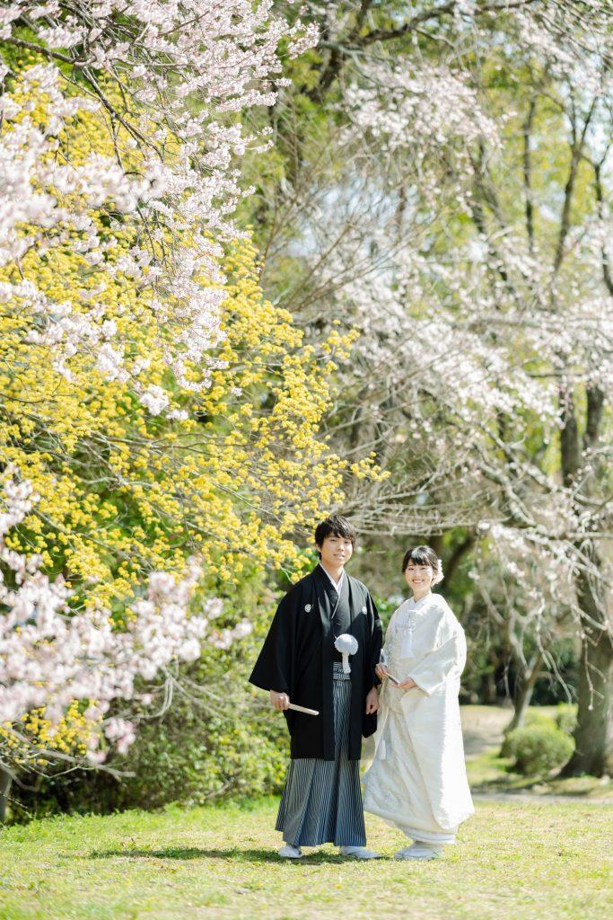 大沢の池周辺の早咲きの桜