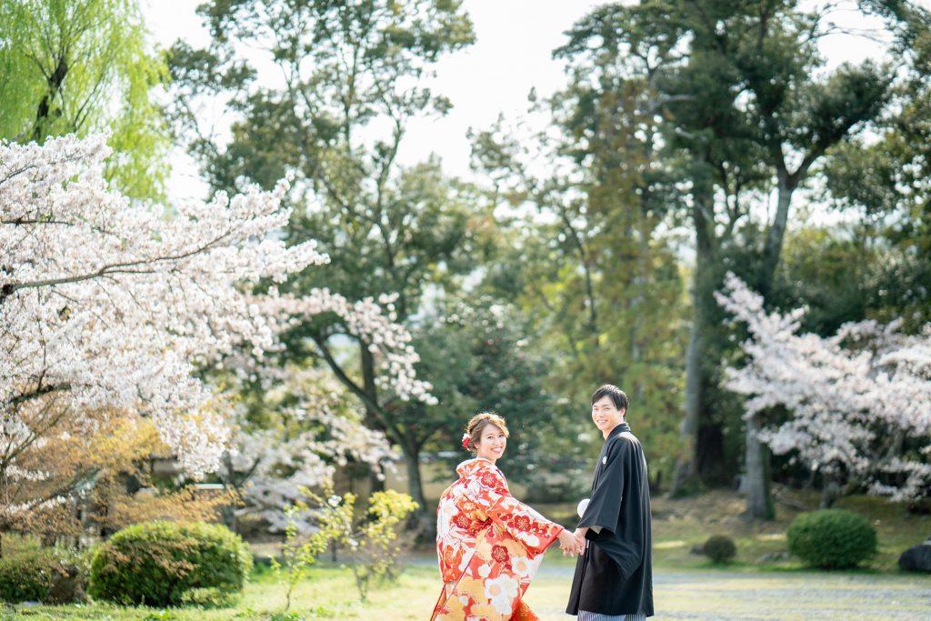 大沢の池周辺の桜と新郎新婦