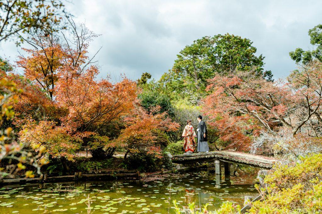 京都の梅宮大社の紅葉