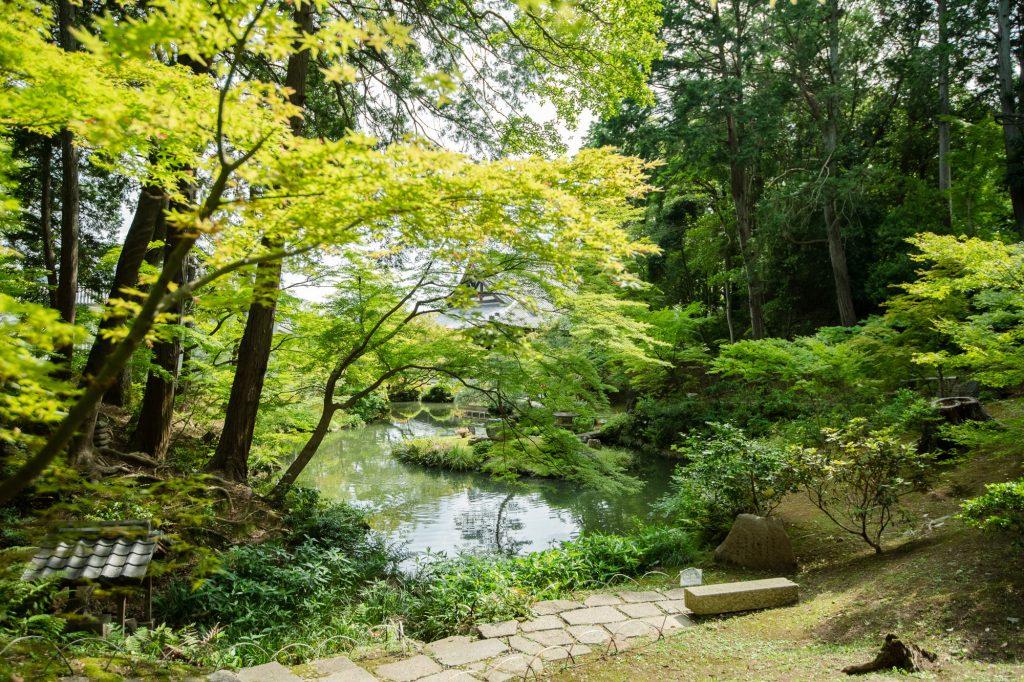 金戒光明寺の池